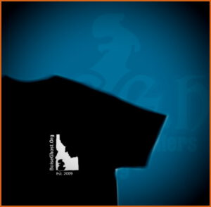 Boise City Ghost Hunters Paranormal Research and Investigations | T-Shirt | Halloween Giveaway